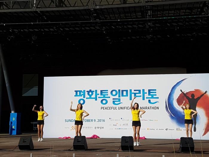 2016평화통일마라톤8