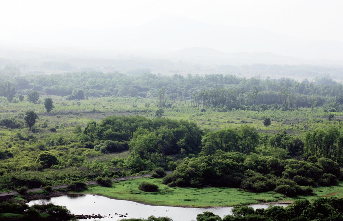 DMZ의 자연 환경